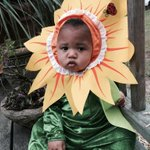 And after a costume change, #BabyNerd is the cutest flower in the garden. http://t.co/lhmDURUok7