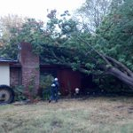 Due to rain, tree falls on abandoned home on Arbutus Ave in Chico. @ActionNewsNow http://t.co/oIf52mFbvY