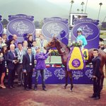 Lady Eli and Irad Ortiz, Jr. win the @breederscup Juvenile Fillies Turf #BC14 http://t.co/5KYfoS2J7v