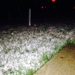 Official first snow for #Westfield with grassy accumulation! Many spots seeing the same! @fox59 #inwx http://t.co/iMdaEQkZoT