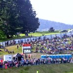 There are people watching this #4Nations game in Whangarei in a tree+on top of a truck! #rugbyleague #nrl #PNGstyle http://t.co/3017hWZ30e