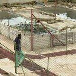 #Business: Investing in #Zimbabwes #crocodile farms http://t.co/1LWGI4uTlZ http://t.co/eKPjTfO6dW