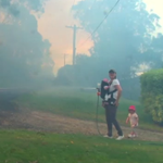 Young family protects their home as Katoomba is once again shrouded in bush fire smoke. #9News http://t.co/lsvLeXLeWq