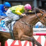 Thunder Lady wins the Wakeful Stakes @CarnivalRSN @Globalgallop @justhorseracing @ThirdDividend http://t.co/LkCyg4oaJp