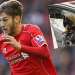 Liverpool star Adam Lallanas car torn to pieces by monkeys http://t.co/LgTDYJBsWK http://t.co/3Dg6m3bdAa