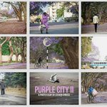 Purple CIty II - A collection of street photographs shot during the Jacaranda Season in Harare by @stevenchikosi http://t.co/hOFweSDrZW