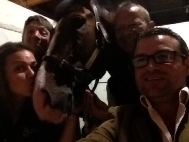 Toast's back safe and sound what a amazing horse !!!! #ToastofNewYork #BreedersCup #unbelievable http://t.co/wrXNkEQdkV