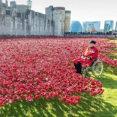 Beautiful image ... Remembrance Sunday http://t.co/zExqzTrjHH