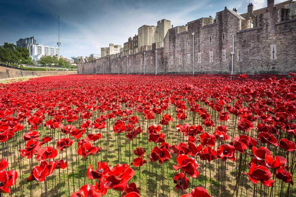 One of the greatest most beautiful poppy displays we'll ever see #WeWillRememberThem http://t.co/FOsGAa2P06