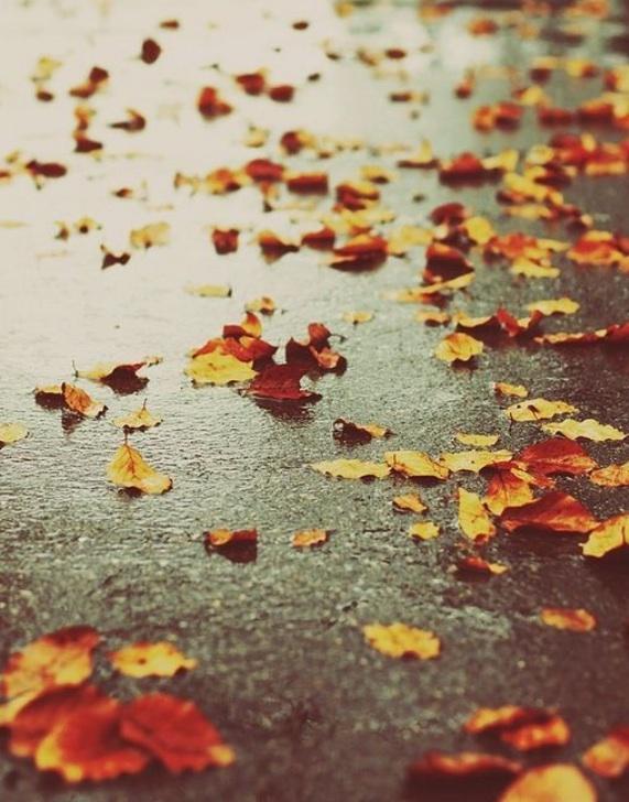 Å være ute i regnvær er vidunderlig deilig - etterpå. Når du er tørr igjen. #søndagstur #akeraktiv http://t.co/j2NeSIwpKH