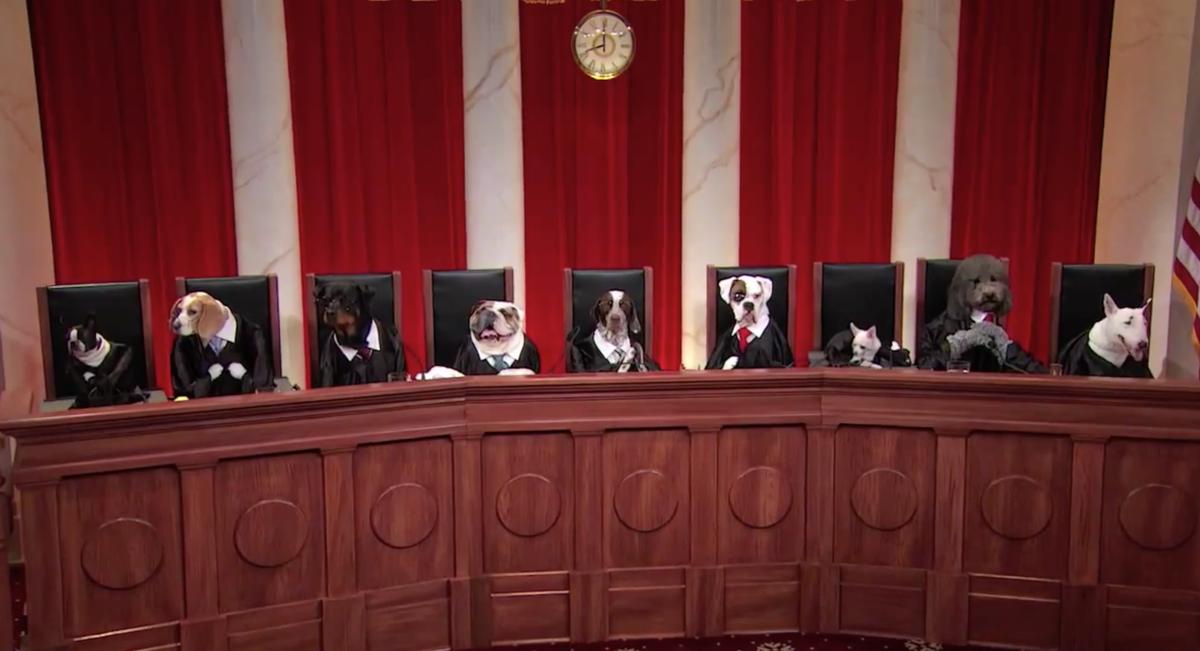 美国高院拒绝录像,只公开全部审判的录音,结果美国人干了什么,找了一堆猫狗坐在一个法院的布景里面,然后给高院的录音配画面,现在在youtube搜索supreme court dog,可以搜索到上百个真实的庭审的录音配画面。搞笑至死, http://t.co/qkZa0LPUK6