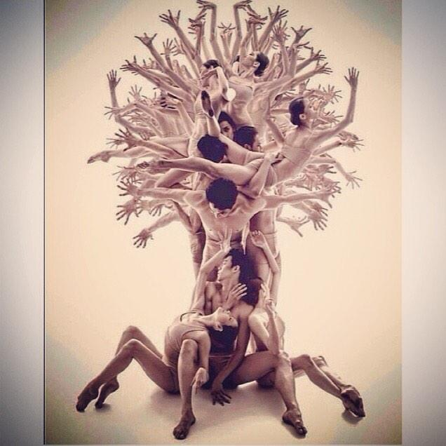 """A tree of #dancers > amazing image"" http://t.co/nBdrtkW6nG via @AllisonFoat"