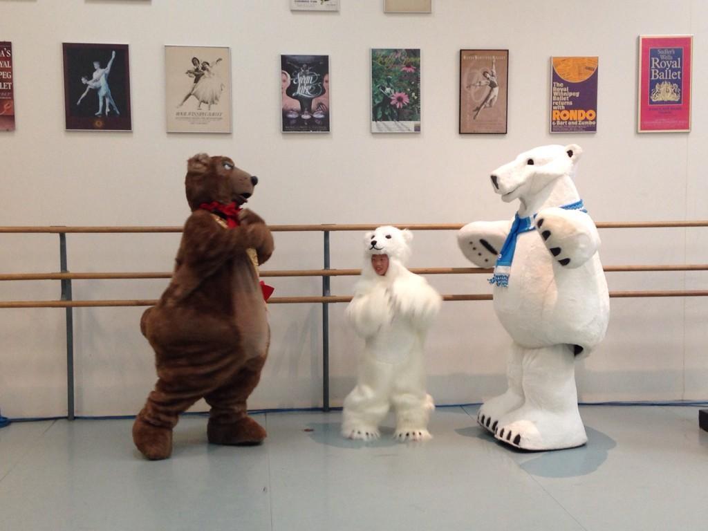 RT @assiniboinezoo: Winston, Filbert and one of the #RWBNutcracker polar bears give a ballet demonstration! @RWBallet http://t.co/7vXXFyapSj