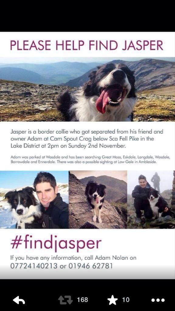 Plz keep retweeting #findjasper plz http://t.co/SfXr9baIKz