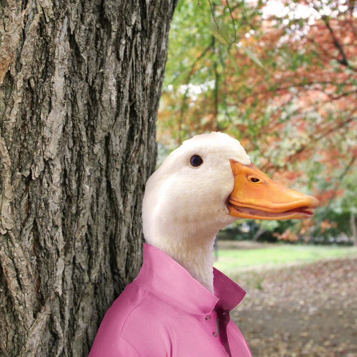On Wednesdays I wear pink. J/K, I accidentally put a red shirt in with my whites last night. #LaundryDay #DuckLife http://t.co/uLMoR0sCAx
