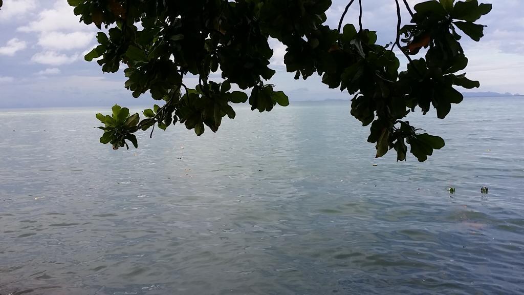 ขยะกระทงเต็มทะเล orz (-_-;) http://t.co/9Nvv7HqQmq