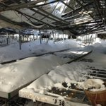 Several greenhouses collapse at Amos Zittel & Sons http://t.co/OX7t1SoHT0 via @BfloBizECarey #Buffalo #stormknife http://t.co/rmfKPjhdh7