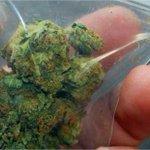 Que bolas malditos drogadictos. RT @UNoticias: 230 mil adictos usan la marihuana http://t.co/vj78b8T5vG http://t.co/8sUNlU0iQI