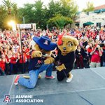 Happy anniversary, @OfficialWilbur and @OfficialWilma! You are the cutest couple we know! #BearDown http://t.co/vEjFFO774G