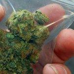 Estiman que en Venezuela hay 230 mil consumidores abusivos de marihuana http://t.co/zhWUgQvt42 http://t.co/FKvaLQFhPm