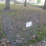 De bladkorven zijn weer geplaatst in @OnsAlexander @rotterdam. Ieder die helpt mag ze vullen. Ruimt lekker op! http://t.co/oTNH9sH3Gk