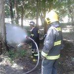 Cabrero, incendio pastizales sector La Aguada. Bombero 3ra Monte Águila, 5ta Chillancito y Conaf @SilverTim77 a cargo http://t.co/npR4yxMxu7
