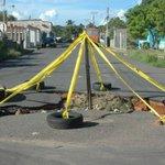 via @zorrojuan: @trafficTACHIRA @grace VIVA LA NAVIDAD! EXCLUSIVOS ARBOLITOS MADE IN Venezuela! http://t.co/SfomxmBq0d #Caracas