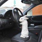 """""""Entra no carro Alice. Eu te explico no caminho."""" http://t.co/JIIMH2BUkA"""