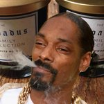 RT @BuzzFeed: Snoop Dogg made a candle and it doesn't smell like weed http://t.co/HPrfX6vZmq http://t.co/CanoS9fVZv