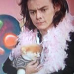 THAT PUPPY IS ME I AM THAT PUPPY IF HARRY EVER HELD ME. #MTVStars One Direction @onedirection #AOTY #AMAs http://t.co/uoHn1Jq6LF
