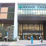 【明日】多くの人で賑わうプレオープン中の新商業施設「グランツリー武蔵小杉」 http://t.co/PBkSqDtYWP グランドオープンは11月22日 http://t.co/5GLDoVdw1M