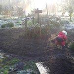 Een prachtige ochtend op de tuin. Met goede hulp zie je snel resultaat. http://t.co/Bm9oiEBji7