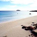 Paisajes que inspiran (Cala Nova) / Landscapes to inspire (Cala Nova). #ibiza #eivissa http://t.co/TMe8KZ83nU