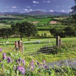 Discover the wild landscape of the #Sperrin Mountains - An Area of Outstanding Natural Beauty: http://t.co/nNVKp4q8Gs http://t.co/oQvgiLtZxA