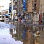 😂😂 تمساح في الصابري http://t.co/Vhv0hWBxbP
