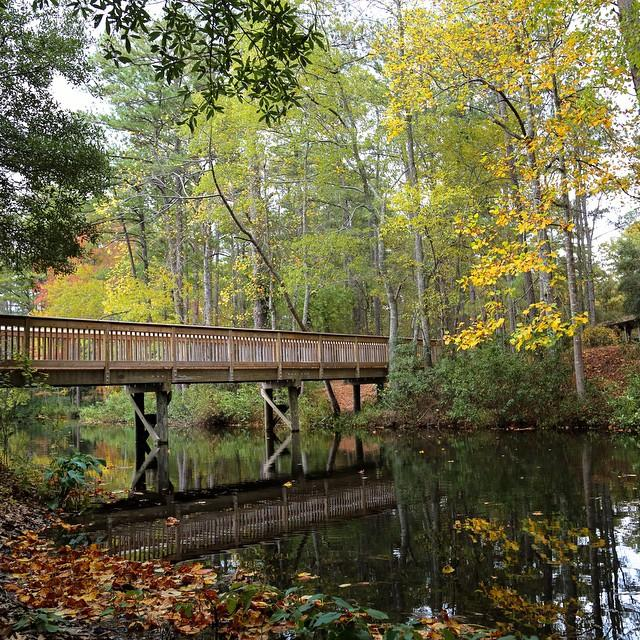 Autumn is looking good at @SC_State_Parks Sesquicentennial State Park! Photo Courtesy of @RealAdamPowell http://t.co/jMl0DmluKP