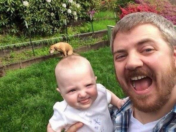 "Best pic seen today ""@Renzo_Soprano: I may see a better selfie of a man, a baby and a dog this month but I doubt it. http://t.co/kK02OJST24"""