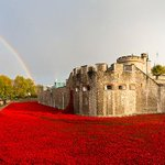 "RT @gavmorris: Wow .. The poppy memorial at Tower of London is breathtaking ""@TheSunNewspaper: We will remember them. http://t.co/a5u2Pv4Xr…"
