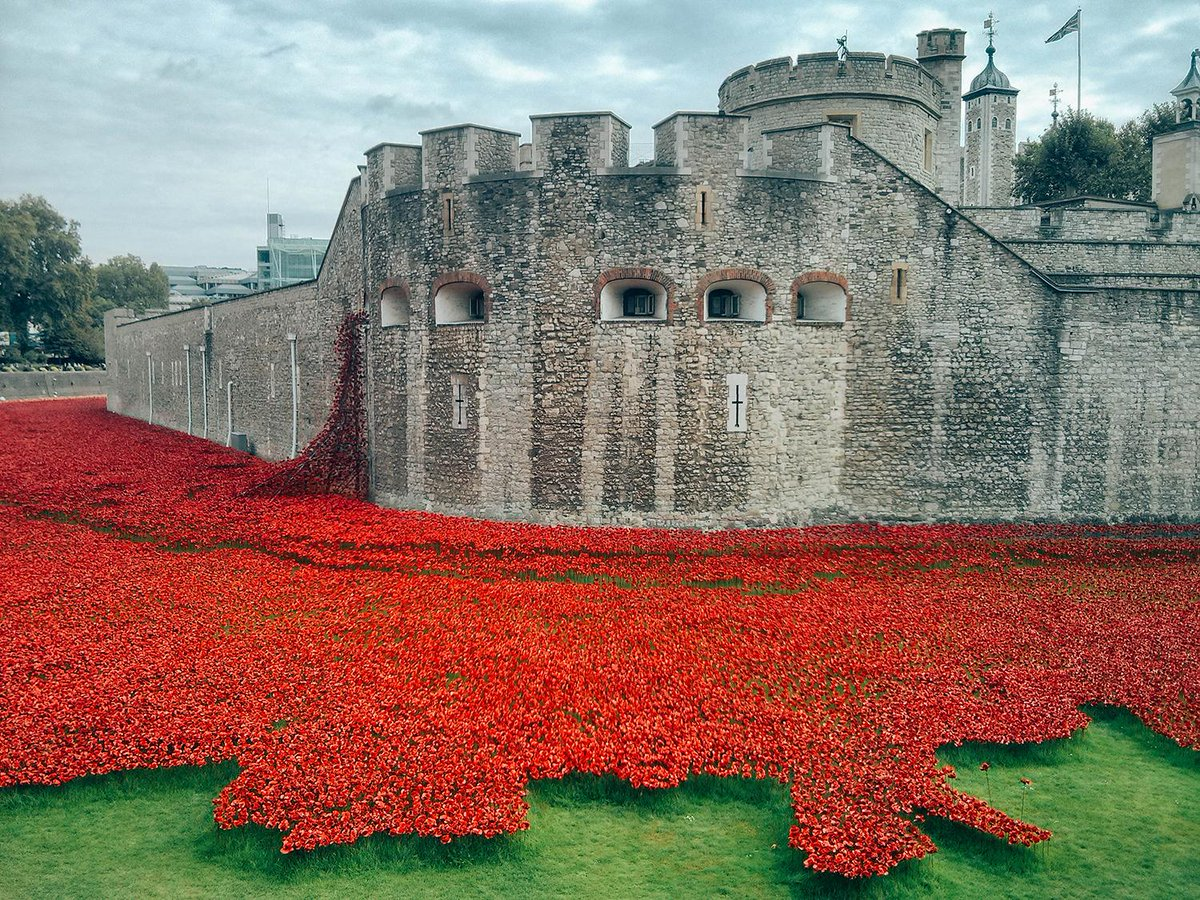 When you go home tell them of us and say: for your tomorrow we gave our today. #LestWeForget #WeWillRememberThem http://t.co/lujis3W9ZJ