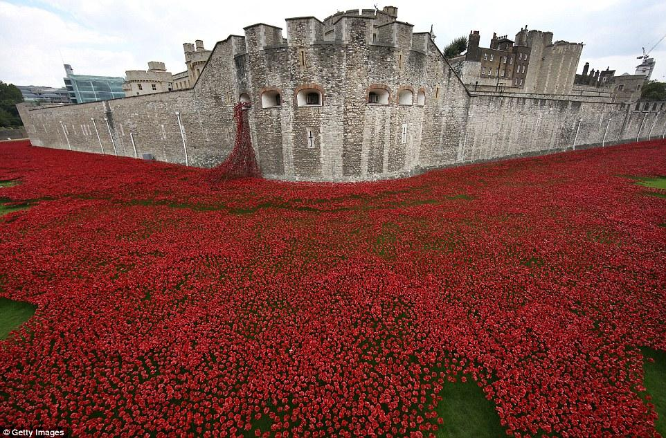 The cost of war: 888,246 poppies, one for each Commonwealth soldier to die in World War I. http://t.co/BGuq4Ze1Ey
