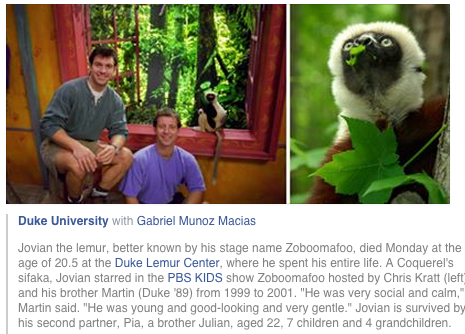 Just heard the lemur who played Zaboomafoo passed, rip lil' leaping lemur! :( http://t.co/2P4mcVnHOP http://t.co/grjJUuUBER