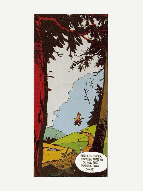 Calvin & Hobbes - Magazine cover
