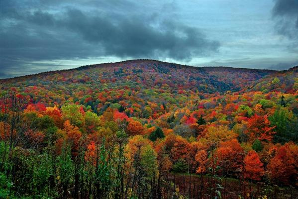 This is what fall in Virginia looks like. http://t.co/rYhghEQjwd