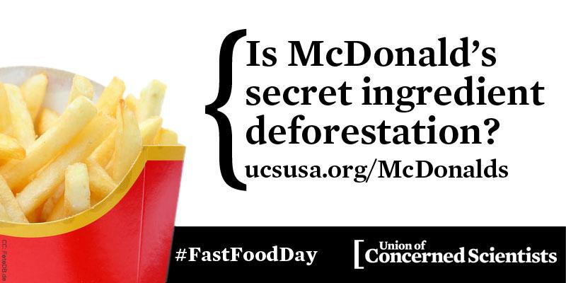 No @McDonalds we don't want a side of deforestation w/ that. #FastFoodDay RT to ask McD's to use responsible #PalmOil http://t.co/pk765cMMGB