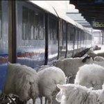 Morgen vertrekken de treinen vanaf 18.00 uur richting Kuip. Jan verkoopt op het station nog kaarten voor #feydor http://t.co/jmSsSCNoey
