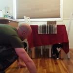 Si tienes gato este VIDEO te encantará → http://t.co/xzc8MZ6O6I http://t.co/jk0tkjmKUw
