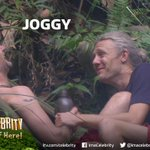 RT your appreciation for our fave new jungle (b)romance #Joggy #ImACeleb http://t.co/XdEc6QkAbx