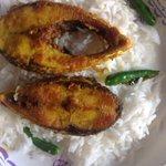 Having lunch. Hilsa fish.