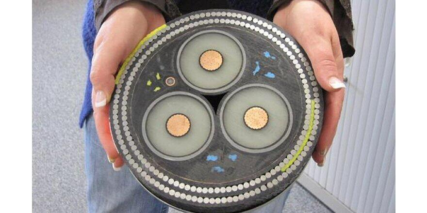 Magnificent cross-section of an undersea cable. $400/foot. (photo: Ann Lingard) http://t.co/MrzTukC12F