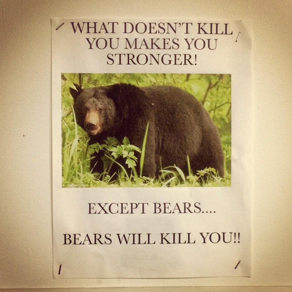 What doesn't kill you will make you stronger. #exceptbears http://t.co/ob8Qmj5AhL